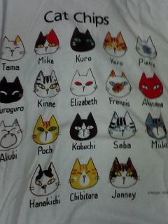 猫Tシャツ3.jpg