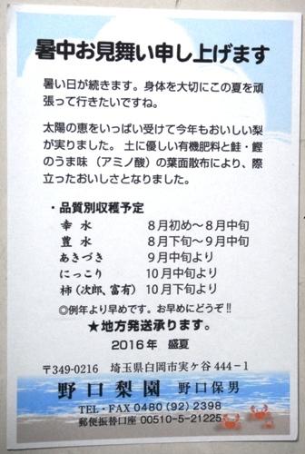 DSC04964.JPG