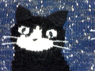 猫セーター1.jpg