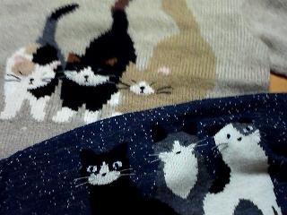 猫セーター2.jpg